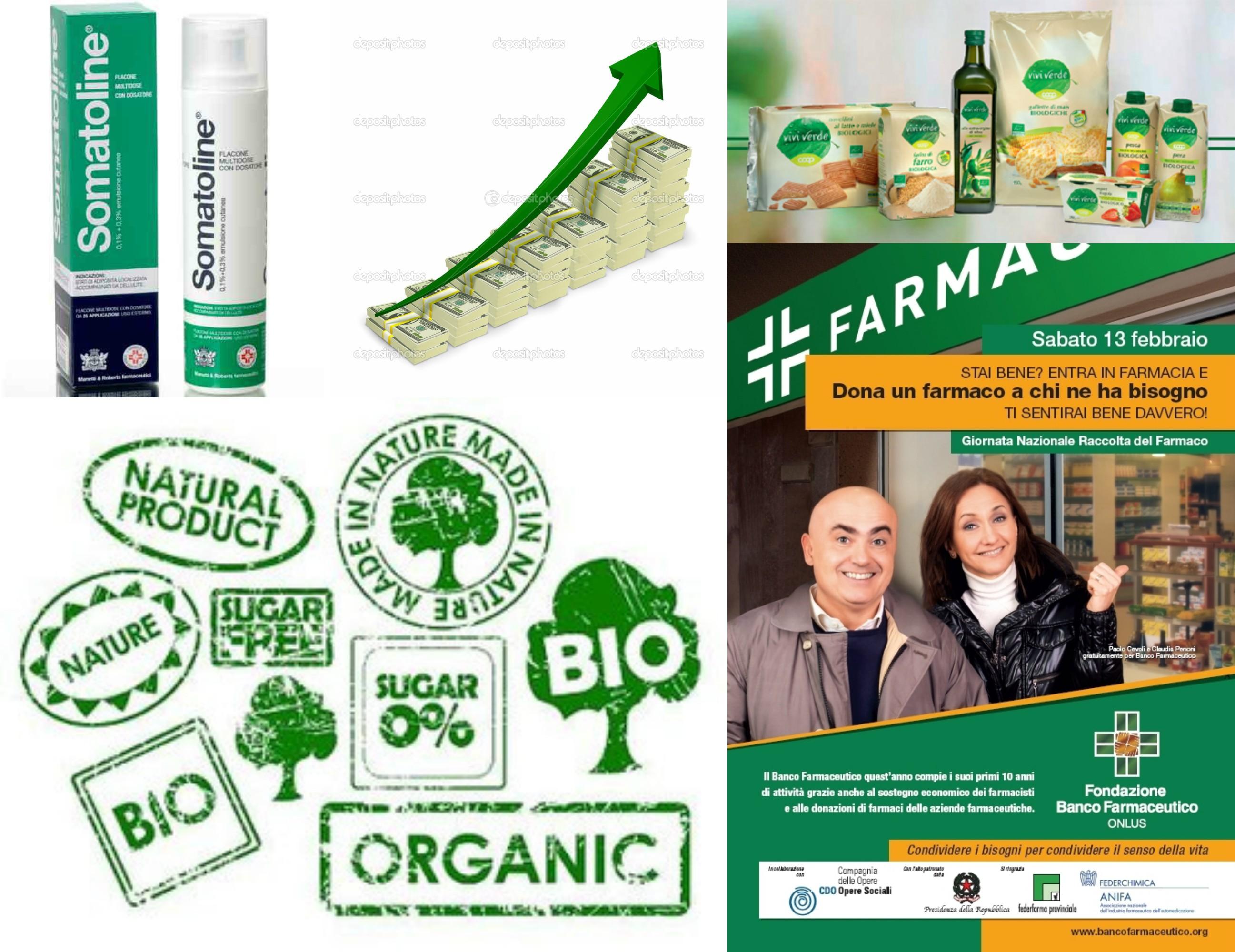 Brand Identity Verde
