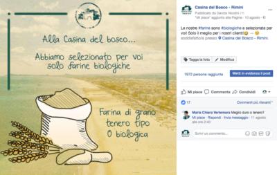 La cura dell'ospite della Casina del Bosco di Rimini