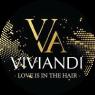 Viviandi - Chi ha scelto Immaginificio