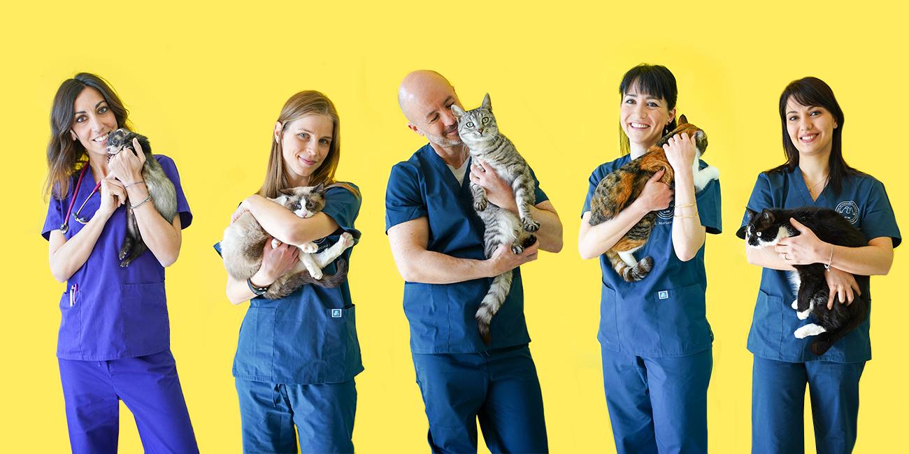 Centro Veterinario SantaLucia - foto staff