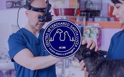 Specialisti in Medicina Veterinaria - Presso il Centro Veterinario SantaLucia è possibile effettuare diverse visite specialistiche tramite l'ausilio di medici esperti in un determinato ramo della veterinaria.