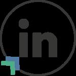 LinkedIn Party Icona